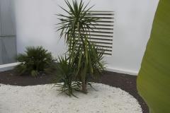 Jardin-plonge-02