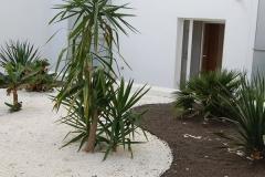 Jardin-plonge-04