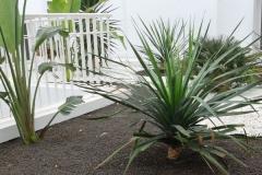 Jardin-plonge-faceLR