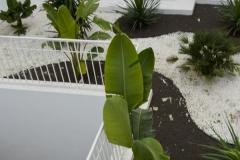 Jardin-plonge-m-LR